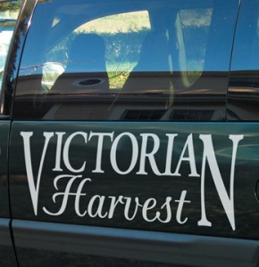Learn to create your own vinyl decals for cars